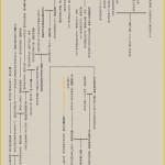 大国主神の系譜